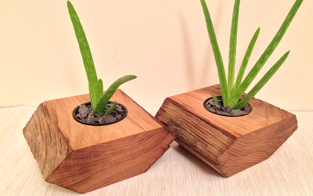 Mini plant pot holder